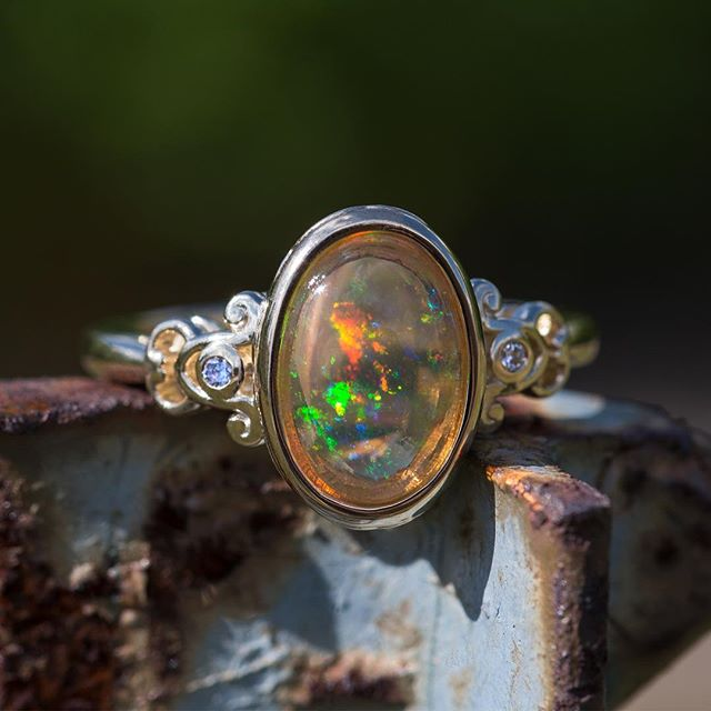 This Mexican Fire Opal is loving the sunlight!