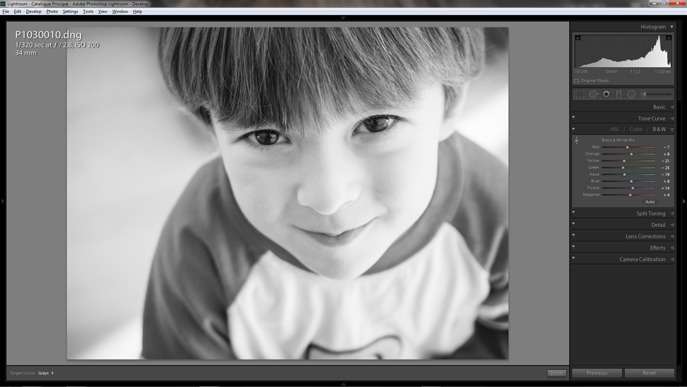 Using the TAT for Black and White conversion in Adobe Lightroom 5.7