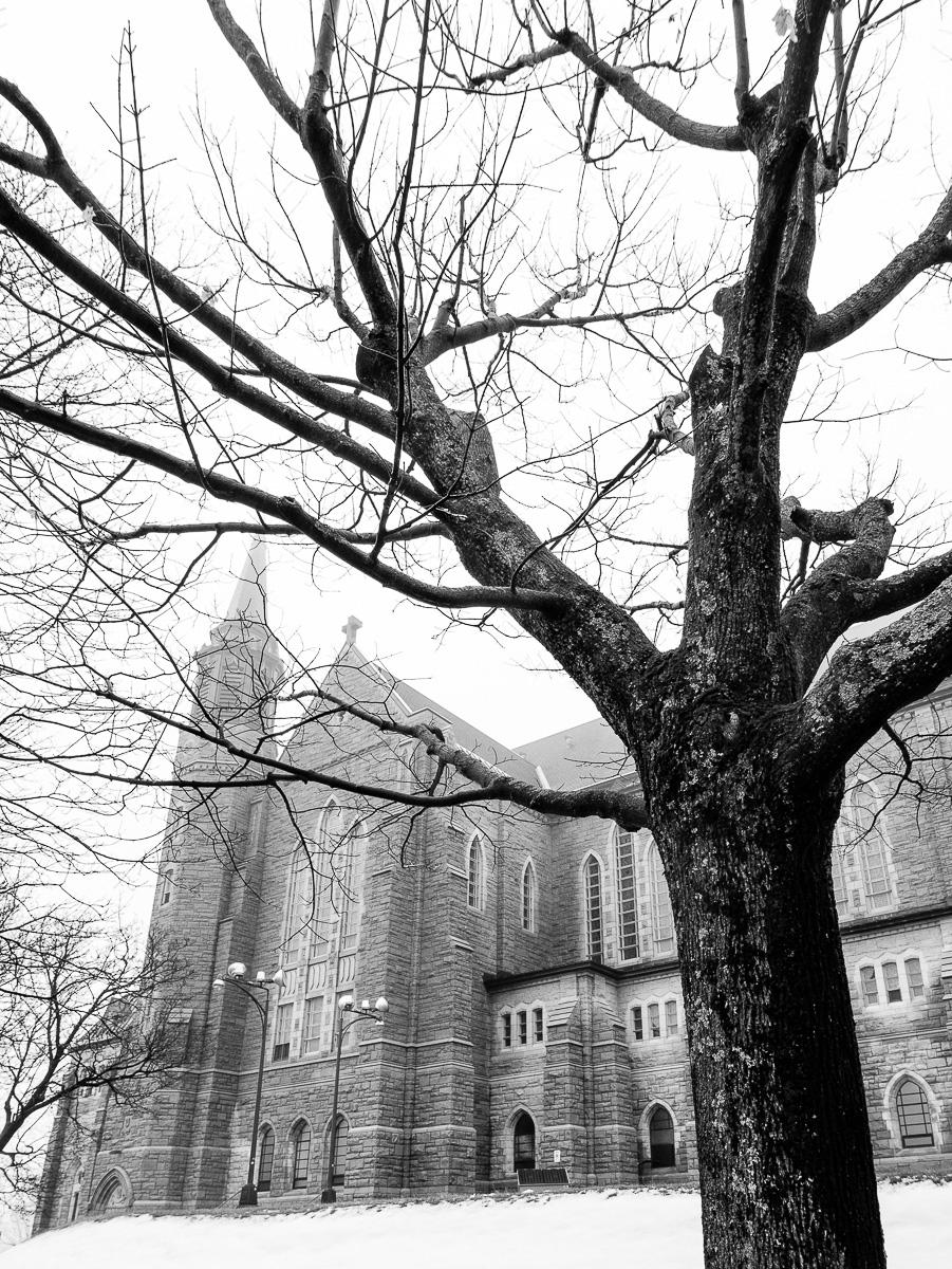 Cathédrale St-Michel