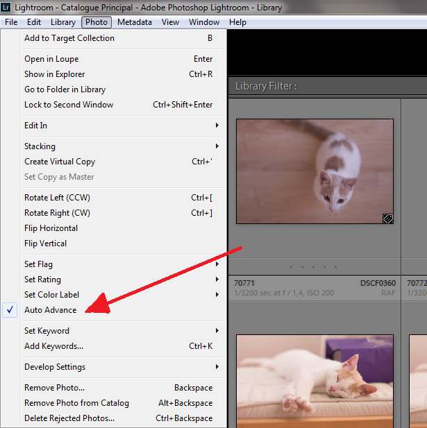 Auto Advance setting in Adobe Lightroom
