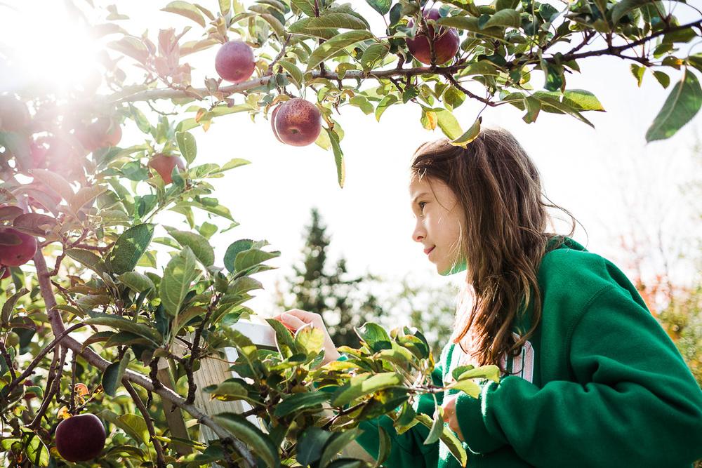 Sarah aux pommes