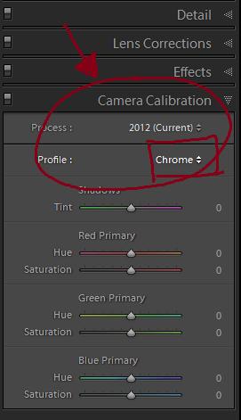 cameraprofile.png