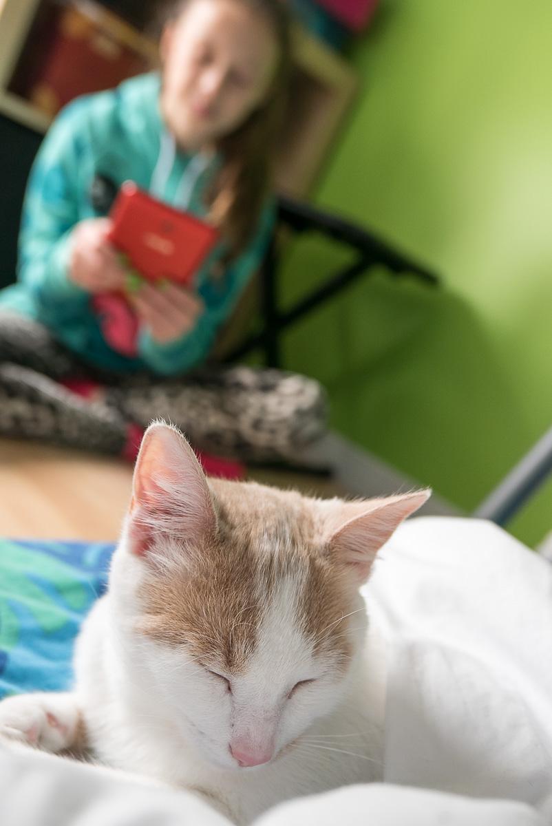 Mya en convalescence. Sarah en a pris bien soin.