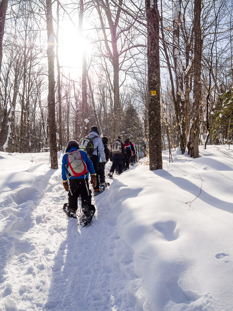 Snow-shoeing with the school