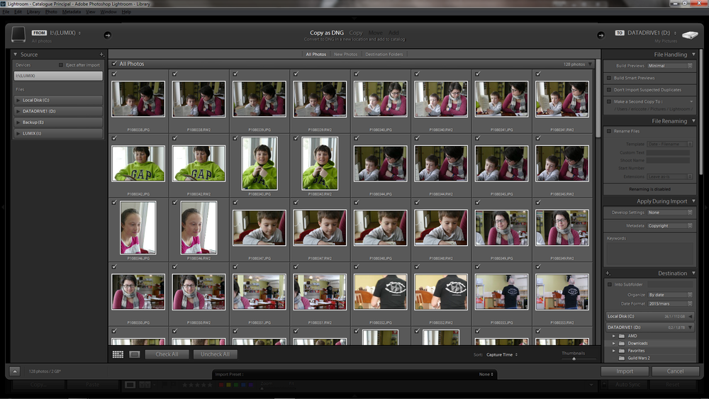 Import dialog box in Lightroom