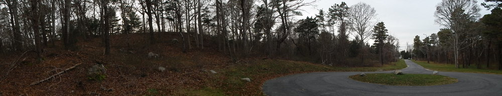 Panoramic view from back of property