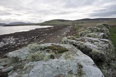 The coast at Orphir