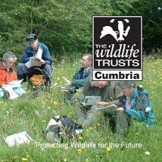 Supporting Cumbria Wildlife Trust