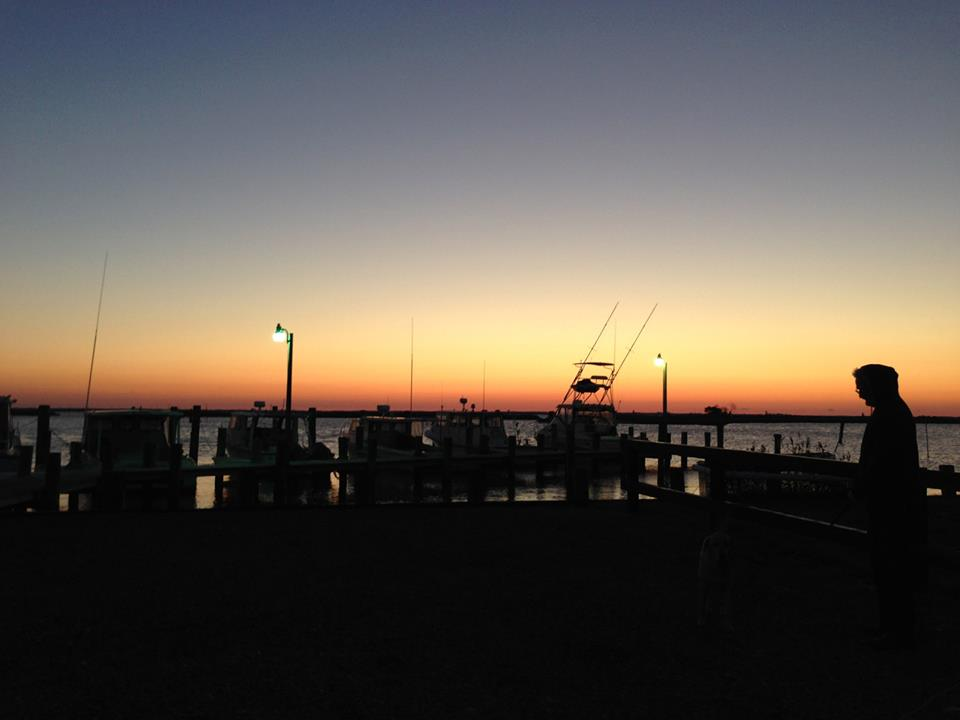 3.2 _Harbor.jpg