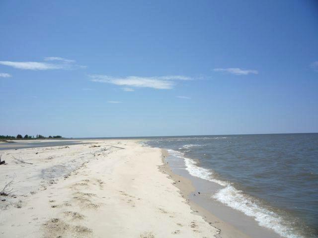 2 Lovers Beach Maryland High Tide .1.jpg