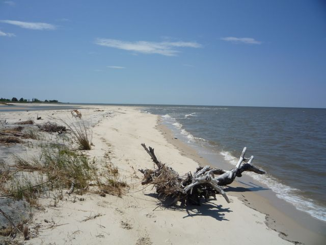 Lover's beach Deal Island.jpg