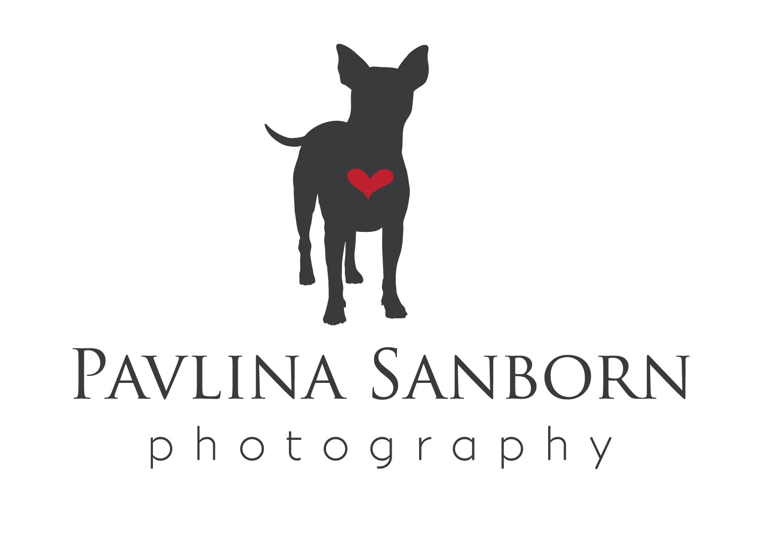 Pavlina Sanborn Photography | Sarasota Area Pet and Family Photographer