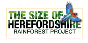 size_of_herefordshire_logo.jpg
