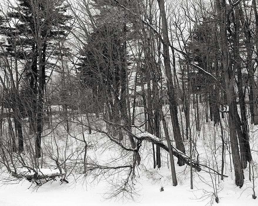 Maine_Feb_2015_026.jpg