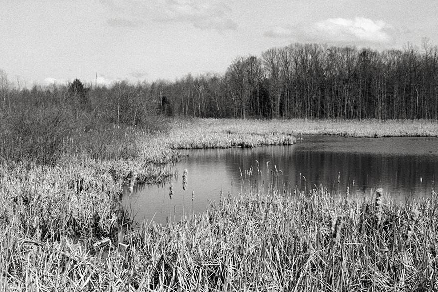Maine_2012_001.jpg
