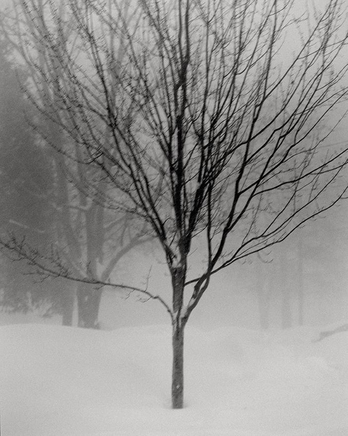 Maine_Jan_2018_004.jpg