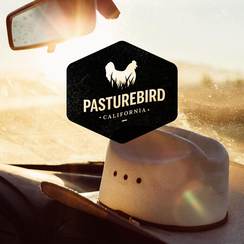 Pasturebird Identity