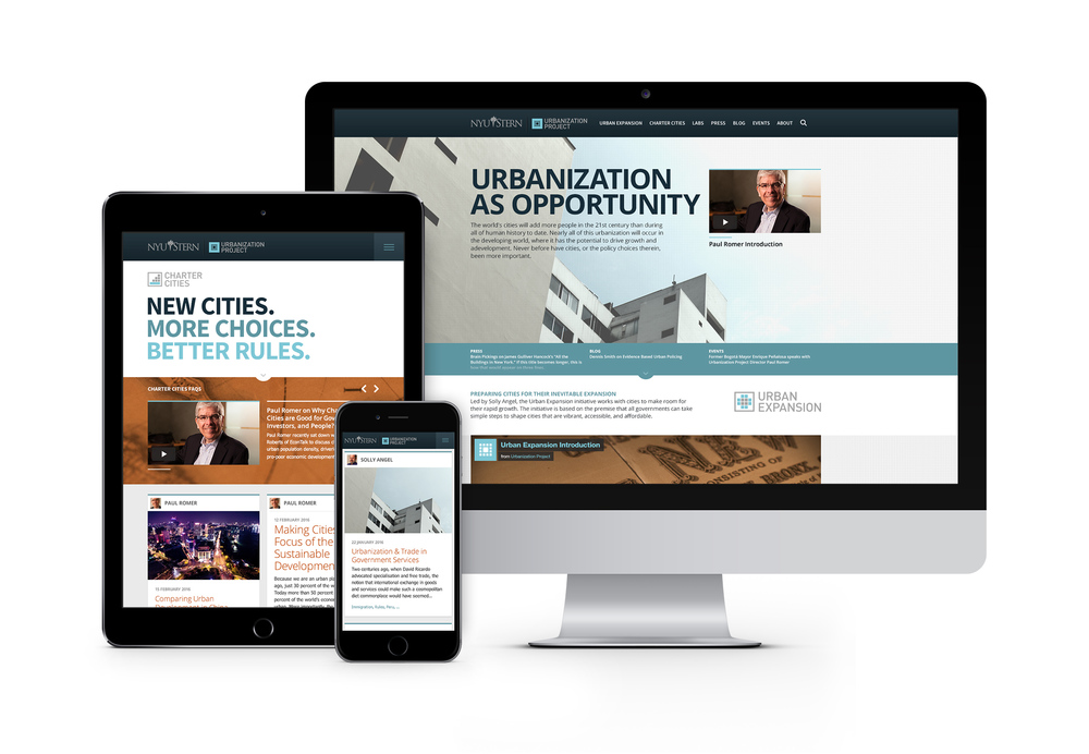 NYU Stern Urbanization Project Identity & Website
