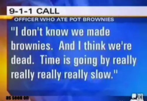 The 9-1-1 Call of the officer who ate weed brownies. LQTM