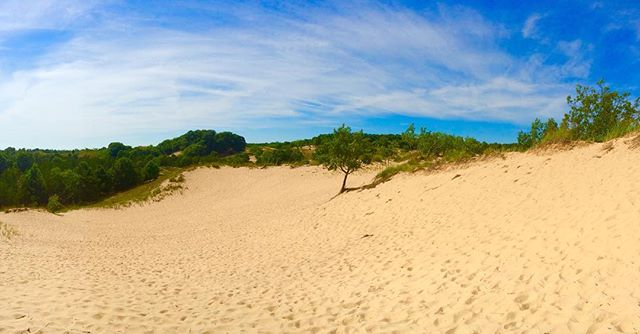 Muskegon state park dune