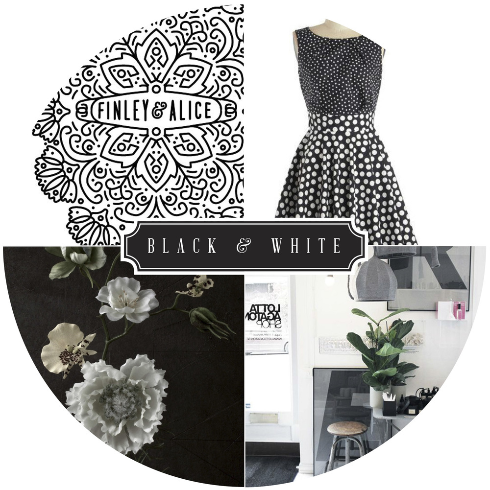 colorcompanion_Blackwhite.jpg