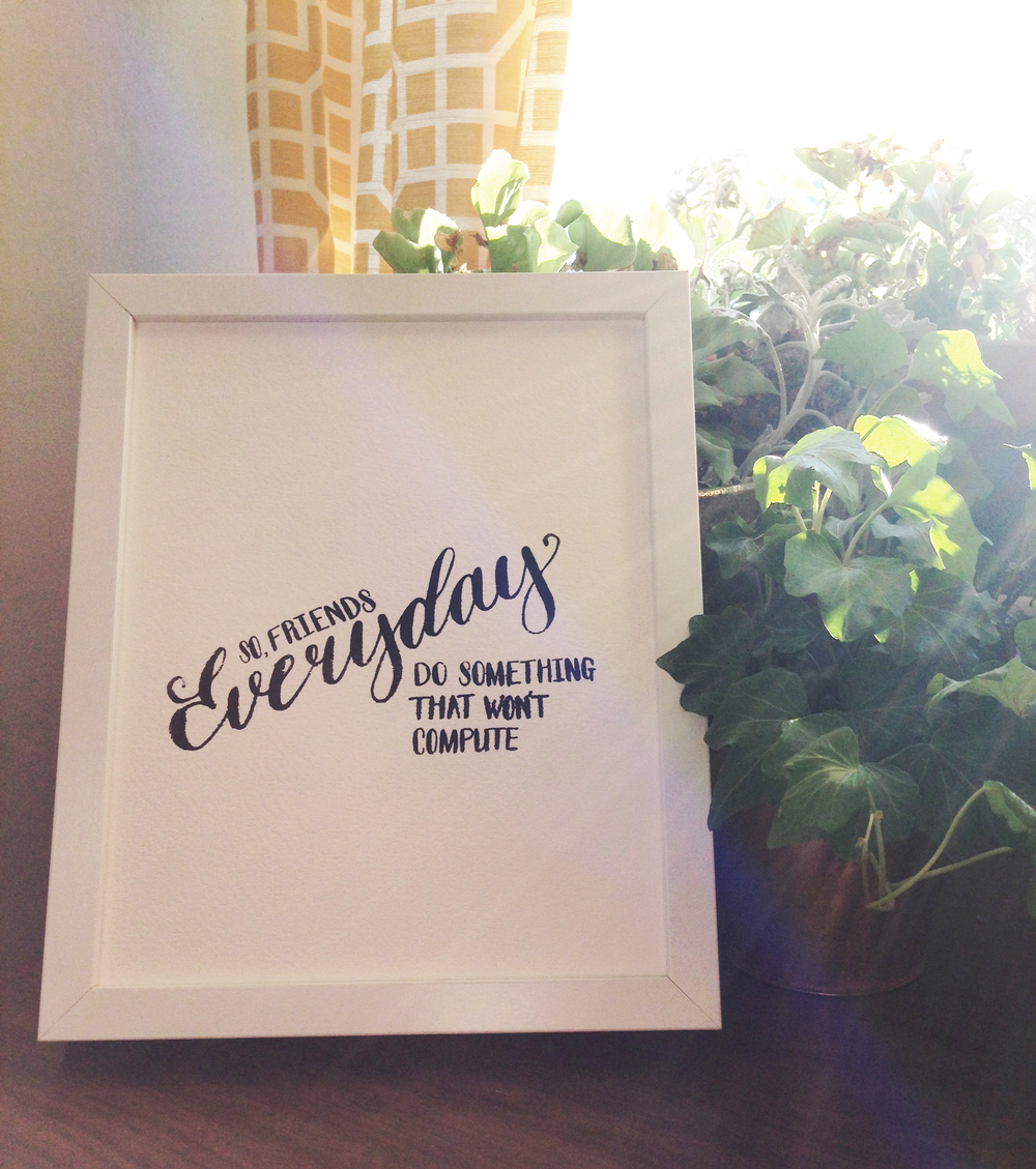 Everyday_plant_sun.jpg