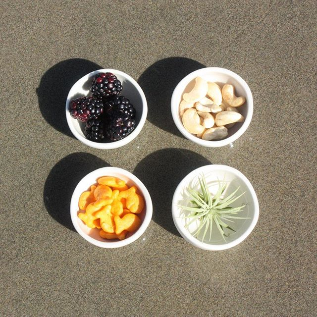 Throwback to an old beach photo shoot - still adorable. #relmstudios #mini #bowls #ramekins #pottery #snack #snacktime #treats #picknick #decor #kitchendecor #dinnerware #airplant #handmade #pdx #oregoncoast