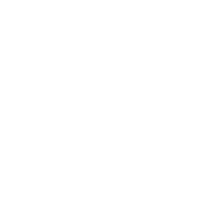 Penny Blooms Weddings and Events