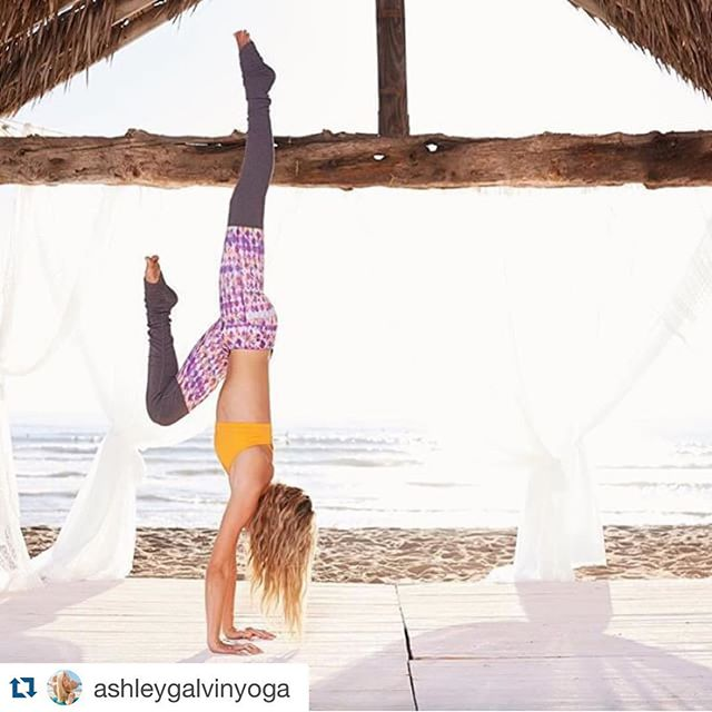 #Repost @ashleygalvinyoga with @repostapp. ・・・ What consumes your mind controls your life. Often times the greatest peace comes out of surrender. #letitgo #yoga #handstand #beagoddess #aloyoga #beachyoga #peace #surrender