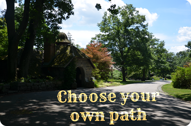 Choose+your+own+path.png