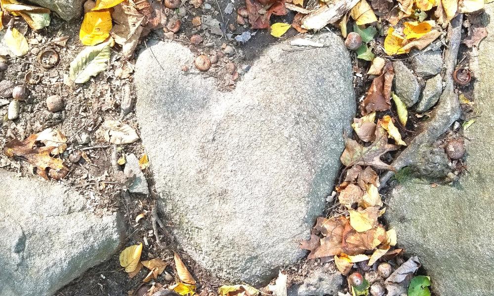 dear brave heart