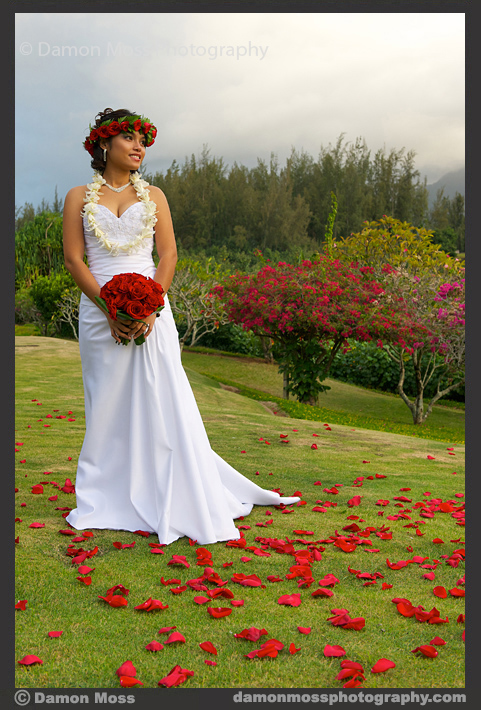 Kauai-Wedding-Photographer-4a-DM.jpg