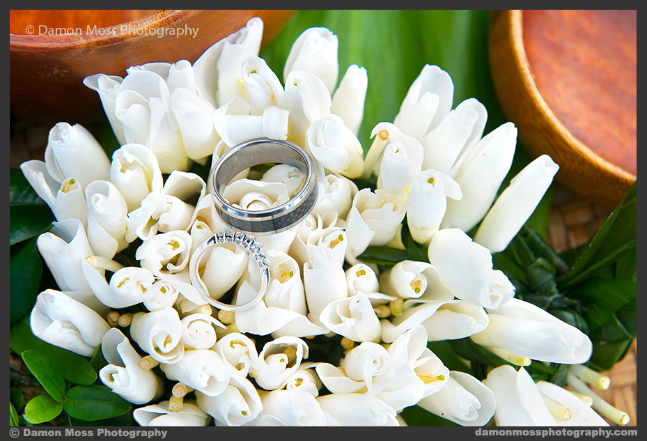 Kauai-Wedding-Photographer-19-DM.jpg