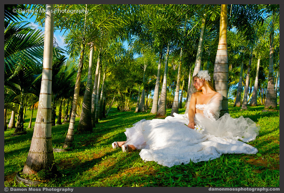 Kauai-Wedding-Photographer-3f-DM.jpg