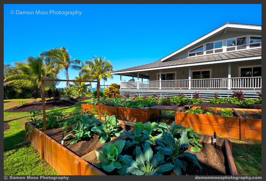 Hawaii-Architecture-Photographer-3d-DM.jpg