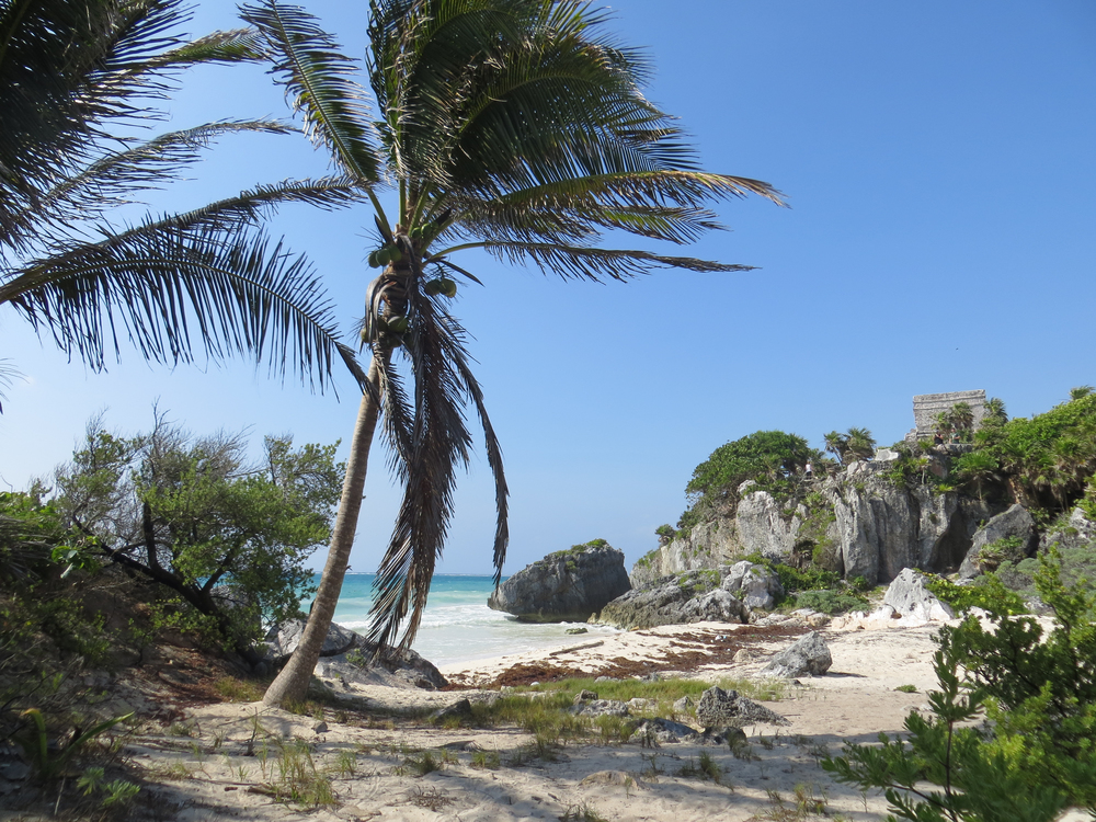 From the Tulum Ruins beach.