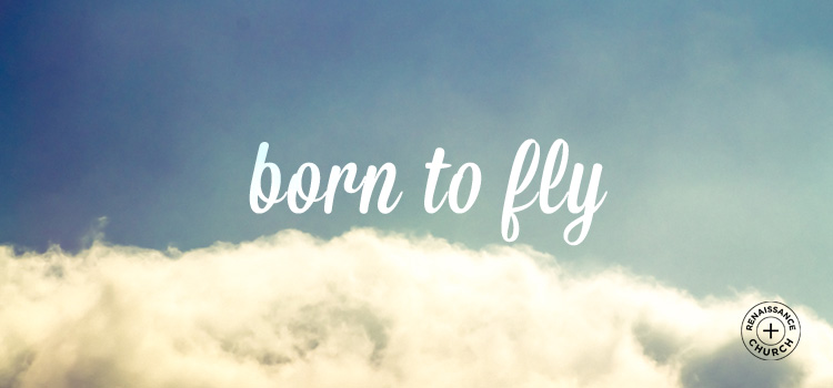 Born to Fly.jpg