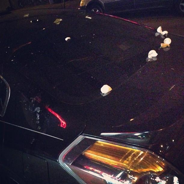 #egged #auto on #halloween.