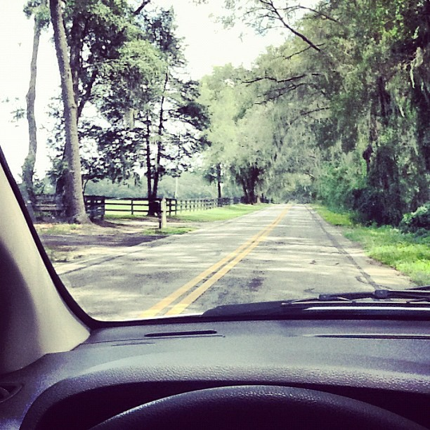 Impromptu roadtrip through the #dirtysouth under canopies of Spanish moss. #boscolyfe (Taken with  Instagram )