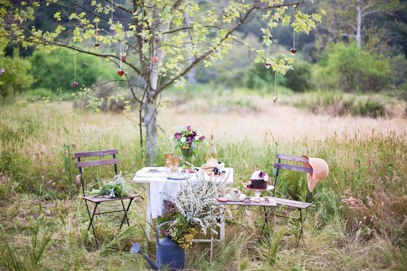picnic-wedding.jpg