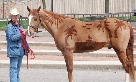 cool idea! shaved horse