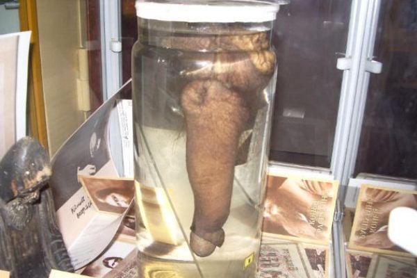 Rasputin's dick in a jar.