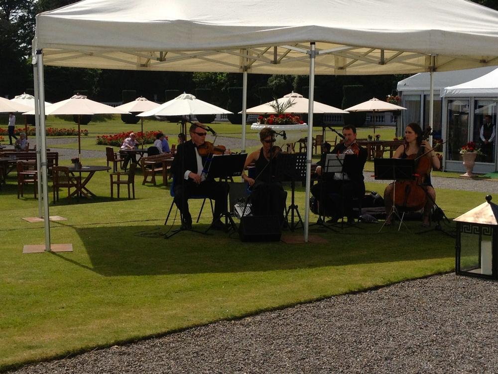 ÁRAS String Quartet.jpg
