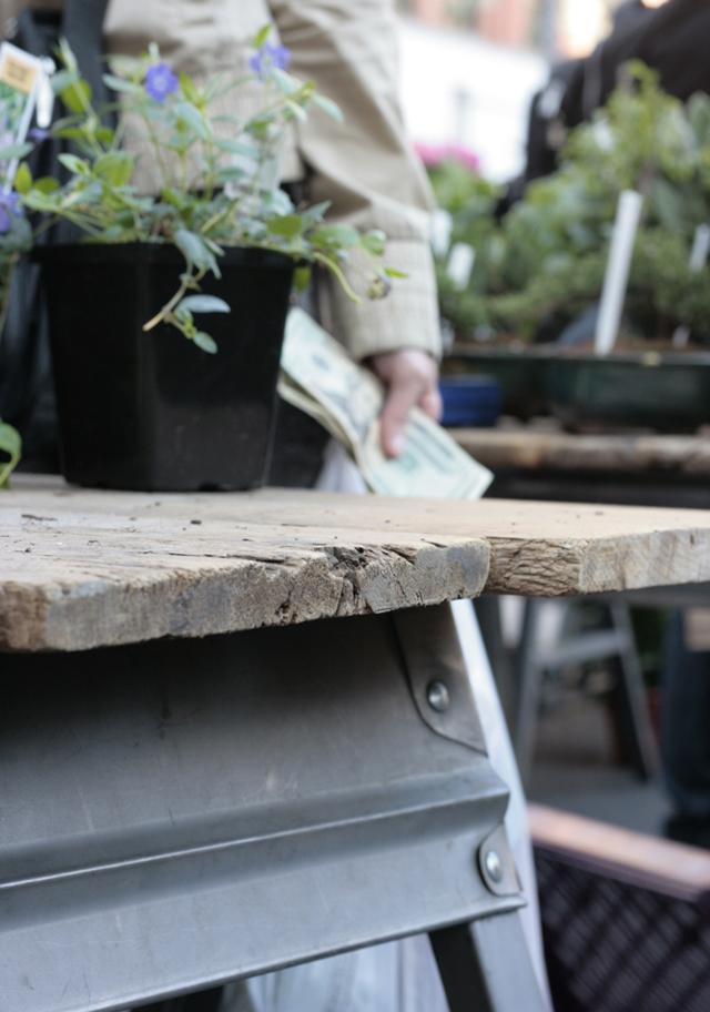 plant table, union square