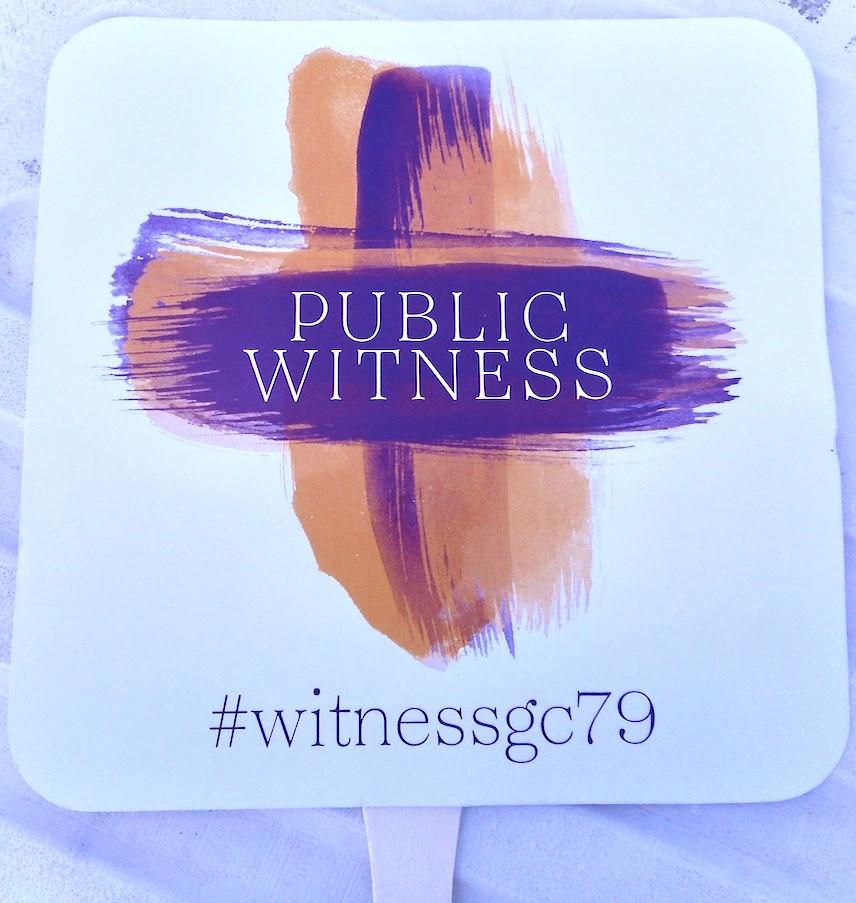 2018-07-09 public witness.jpg