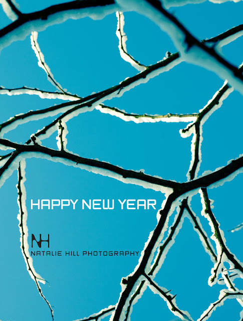 NHPHOTOGRAPHY+NEW+YEAR1.jpg