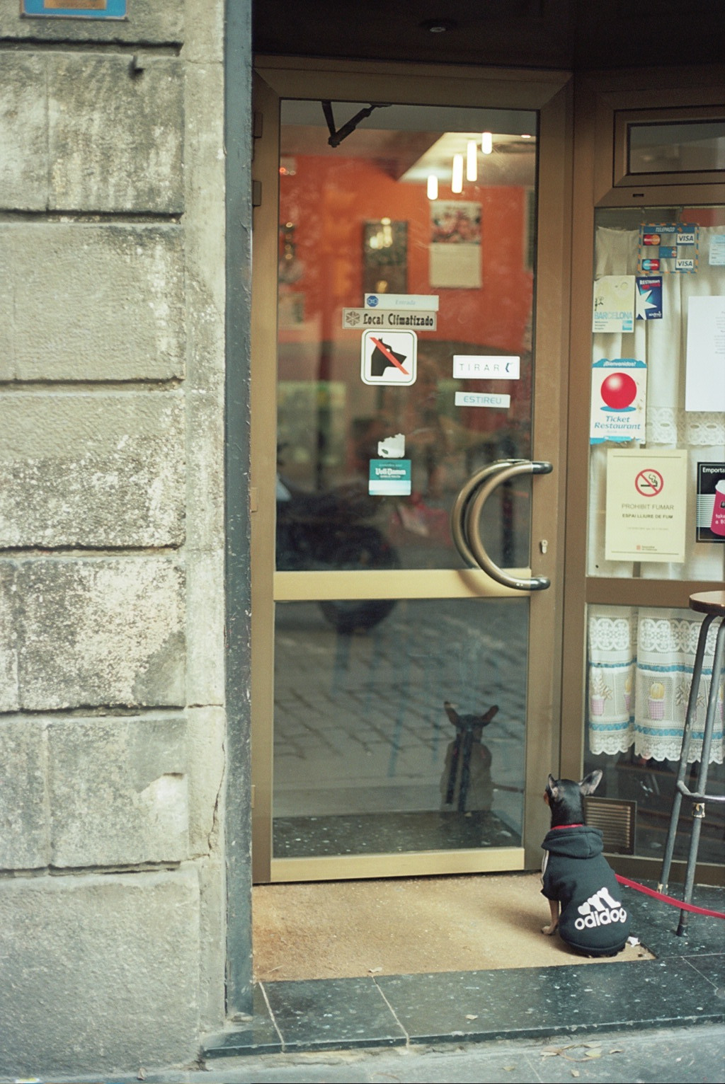 adidog…waiting.    Barcelona, 2015  Canon A1 program