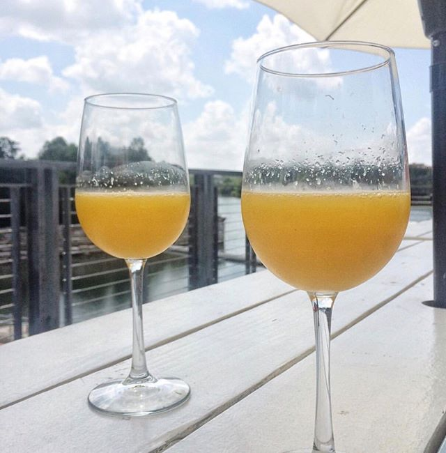 The first Saturday of February is next week, and that means it's time for $10 bottomless mimosas from 11am-2pm! Bring friends, relax, and sip on some bubbles 🥂 ⠀⠀⠀⠀⠀⠀⠀⠀⠀ PC: @atxpartygirl .⠀⠀⠀⠀⠀⠀⠀⠀⠀ .⠀⠀⠀⠀⠀⠀⠀⠀⠀ .⠀⠀⠀⠀⠀⠀⠀⠀⠀ .⠀⠀⠀⠀⠀⠀⠀⠀⠀ .⠀⠀⠀⠀⠀⠀⠀⠀⠀ #saturday #weekendvibes #weekendlove #altascafe #atxfitness #wallercreek #cafe #coffee #butfirstcoffee #patiovibes #patiolife #do512 #do512family #visitaustin #eateraustin #bottomlessmimosas #mimosa #livemusiccapitaloftheworld #localmusic #atxfitness #ladybirdlake #hikeandbike #brunchsohard #austincafe #specialtycoffee #townlake #localbeer #eatanddrinklocal #supportlocalmusic #supportlocalbusiness