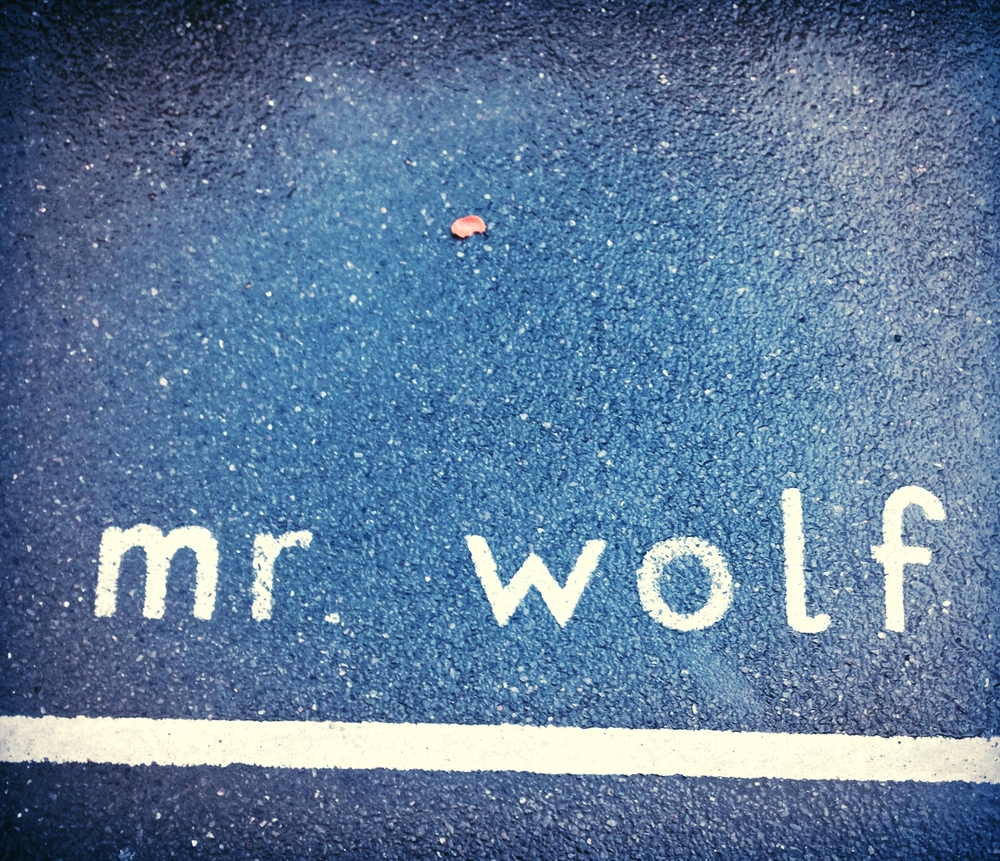 MR WOLF SCHOOL PLAYGROUND