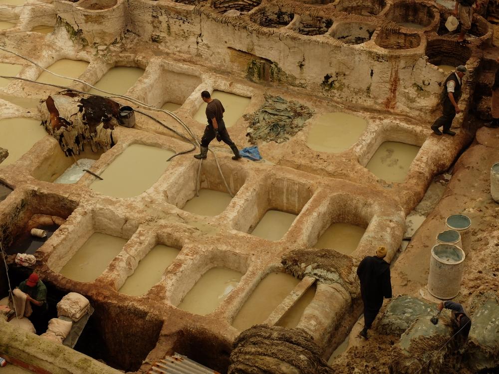 Fez - 12 century tannery
